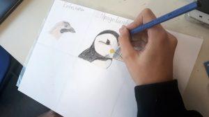 Gesamtschule KW_Erste Ergebnisse aus der AG Wissenschaftliches Zeichnen_3